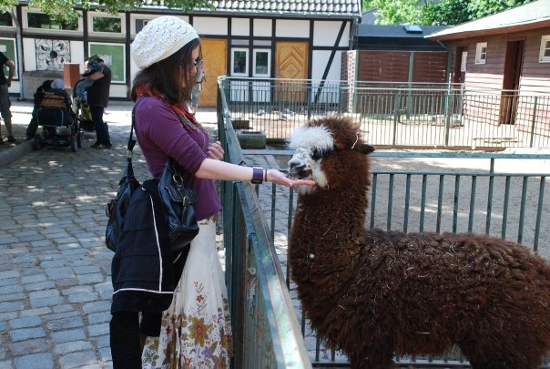 (We went to the Berlin Zoo and met some new friends that day.)